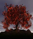Erweiternder Baum vektor abbildung