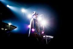 Erykah Badu-Konzert stockfoto