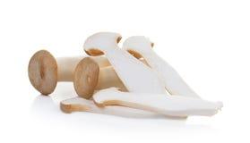 Eryngii гриба на белой предпосылке Стоковое Изображение RF