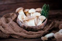 国王蚝蘑在木背景的侧耳属eryngii 土气样式 库存照片