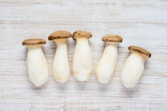 Eryngii Edible Mushrooms Top View Royalty Free Stock Images