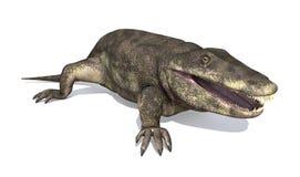 Eryops - amphibie préhistorique illustration libre de droits