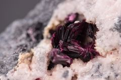 Erythrite mineral crystals Royalty Free Stock Photos