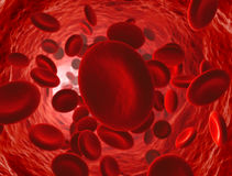 Erythrocyte. Red blood cell  in the artery Stock Photos