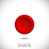Erythrocyte. Red blood cell. Vector Illustration Stock Image
