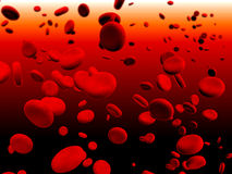 Erythrocytes Royalty Free Stock Photos