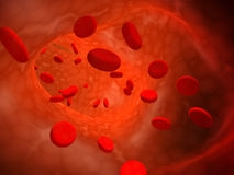 Erythrocytes Stock Photography
