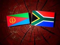 Erytrejska flaga z południe - afrykanin flaga na drzewnym fiszorku odizolowywającym Fotografia Royalty Free