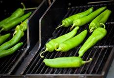 Erzeugnis - Sommer _ Bratluken-Grün Chilie lizenzfreie stockfotos