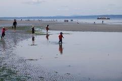 Es überrascht, wie viel von Puget Sound herausgestellt wird! Stockfotos