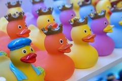 Rubbers duck with a difference. royalty free stock image