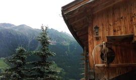 Es gibt ein Baumhaus und -bäume in Österreich Stockbild