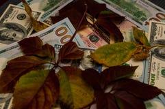 Es gibt nicht viel Geld lizenzfreie stockfotos