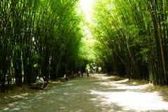 Es ist Bambusbogen bei Wat Chulapornwanaram, die neuen berühmten touris lizenzfreie stockbilder