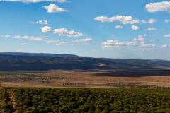 Es ist Brown - Addo Landscape Lizenzfreies Stockfoto