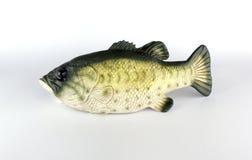 Roboterfische durch Para-Gummi Lizenzfreie Stockfotografie