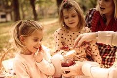Es ` s der perfekte Tag für ein Picknick im Park stockbild