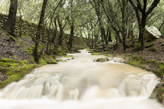 Es Salt des Freu, river in Majorca Royalty Free Stock Photography