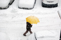 Es schneit Lizenzfreie Stockfotografie