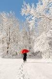 Es schneit Stockfoto