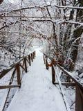 Es schneit Lizenzfreies Stockfoto