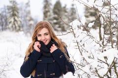 Es un mundo frío del invierno Imagenes de archivo