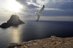 Es Vedra island (Ibiza) Royalty Free Stock Image