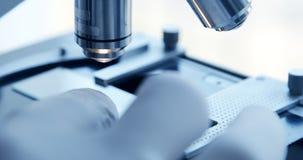 Esame del campione sotto il microscopio in laboratorio video d archivio