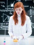 Esame dello studente nel laboratorio di chimica Immagine Stock Libera da Diritti