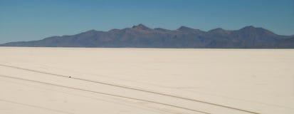 Esaminando giù gli appartamenti del sale da Isla del Pescado, la Bolivia immagini stock libere da diritti