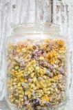 Esaminando i fiori secchi in un barattolo di vetro Immagine Stock