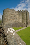 Esaminando il castello Immagine Stock Libera da Diritti