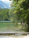 Esaminando il lago Bohinj Fotografie Stock
