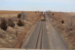Esaminando il treno Fotografia Stock Libera da Diritti