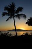 Esaminando Lanai da Maui Immagine Stock Libera da Diritti