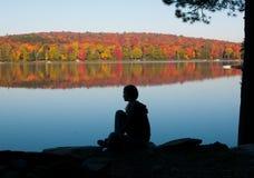 Esaminando le foglie di caduta Fotografie Stock Libere da Diritti