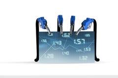 Esamini i prezzi di combustibile Immagini Stock