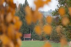 Esamini tramite le foglie gialle una cabina fotografie stock libere da diritti