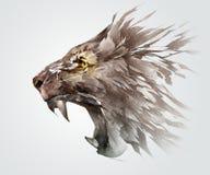 esboço colorido que sorri o focinho de um leão o lado animal Fotos de Stock Royalty Free