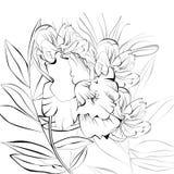 Esboço com flores ilustração do vetor
