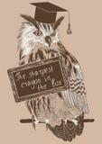 Esboço da coruja inteligente em um ramo com quadro de mensagens ilustração royalty free