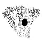 Esboço da página da coloração da árvore dos desenhos animados com uma cavidade Casa ou moradia para esquilos ilustração stock