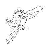 Esboço da página da coloração do papagaio engraçado foto de stock royalty free