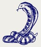 Esboço da serpente Foto de Stock