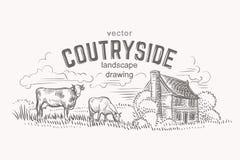 Esboço das vacas e da casa do fazendeiro Mão desenhada Vetor ilustração royalty free