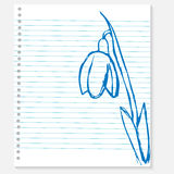 Esboço de uma flor na folha do caderno Imagem de Stock