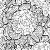 Esboço decorativo detalhado de flores sem emenda Fotografia de Stock