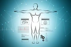 Esboço do corpo humano Fotografia de Stock