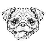Esboço do estilo do moderno do cão engraçado do Pug Ilustração do vetor Imagens de Stock Royalty Free