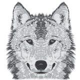 Esboço do focinho do lobo Imagens de Stock